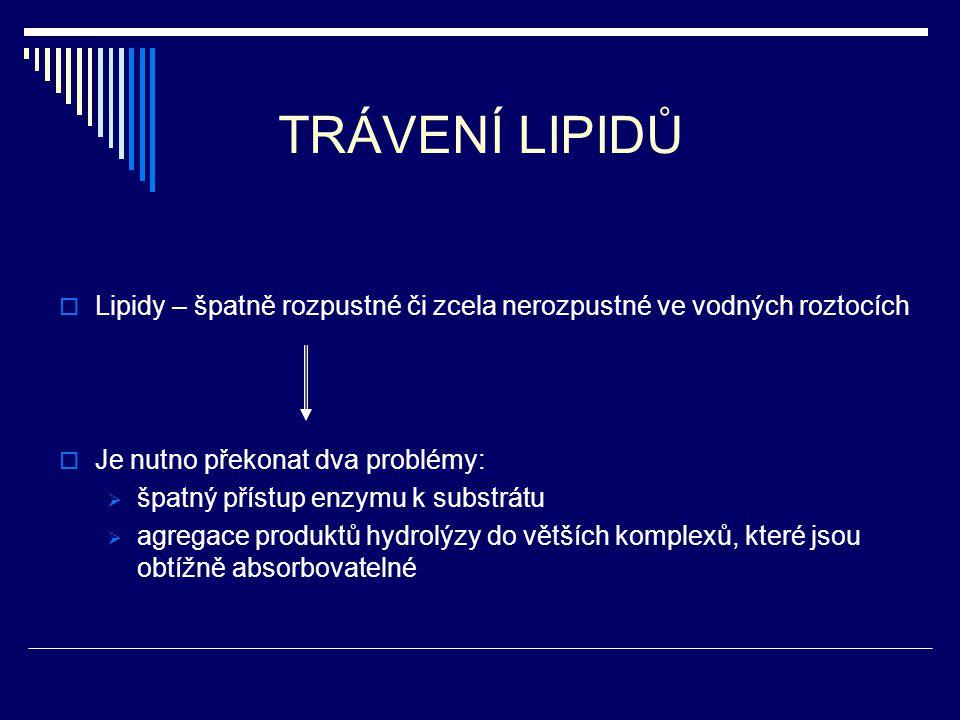 TRÁVENÍ LIPIDŮ Lipidy – špatně rozpustné či zcela nerozpustné ve vodných roztocích. Je nutno překonat dva problémy: