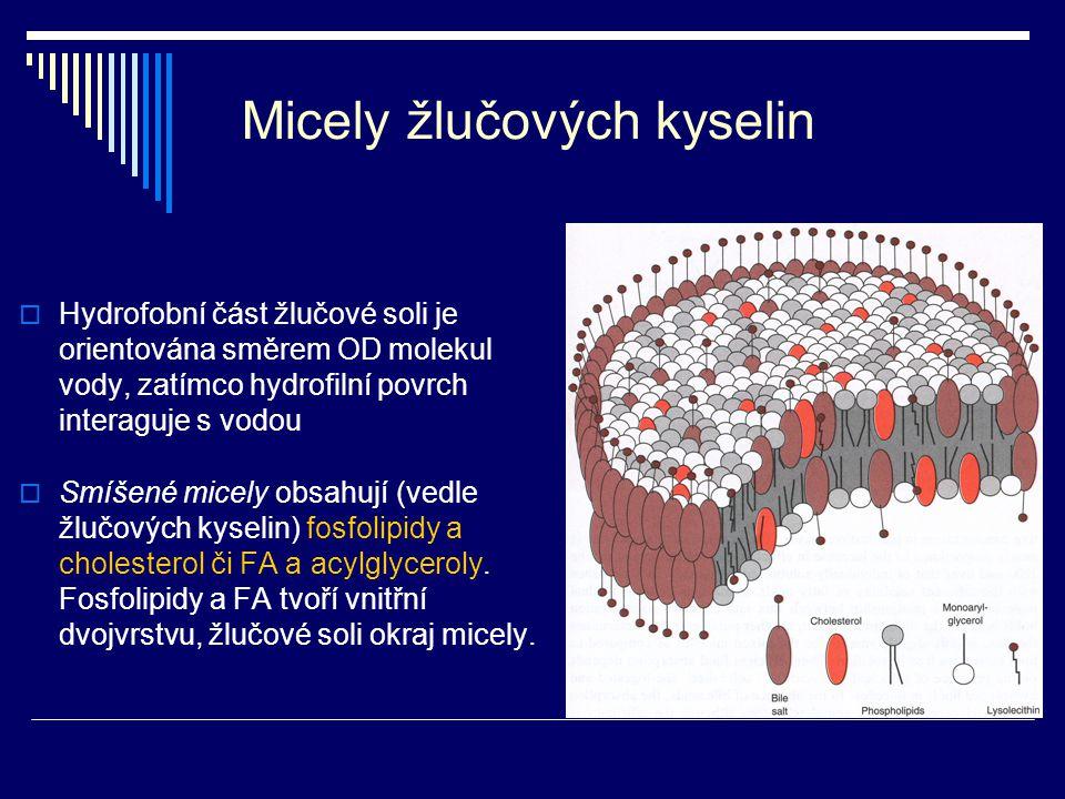 Micely žlučových kyselin
