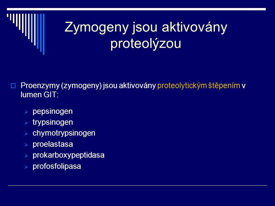 Zymogeny jsou aktivovány proteolýzou