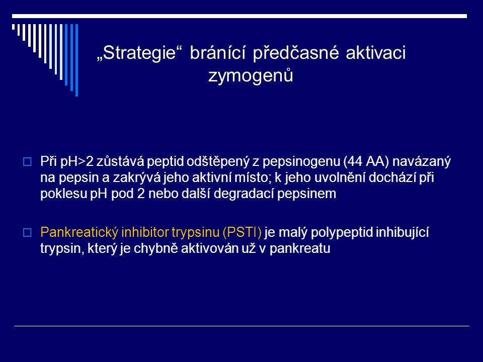 """""""Strategie bránící předčasné aktivaci zymogenů"""