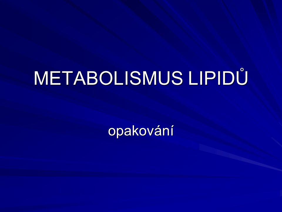 METABOLISMUS LIPIDŮ opakování
