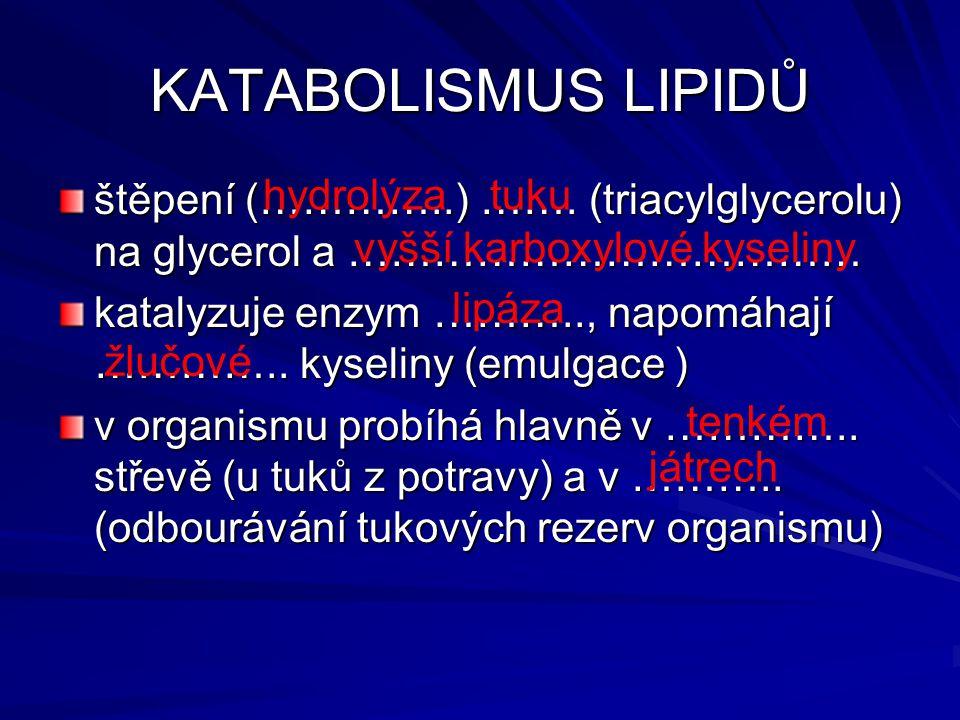 KATABOLISMUS LIPIDŮ štěpení (…………..) ……. (triacylglycerolu) na glycerol a ………………………………