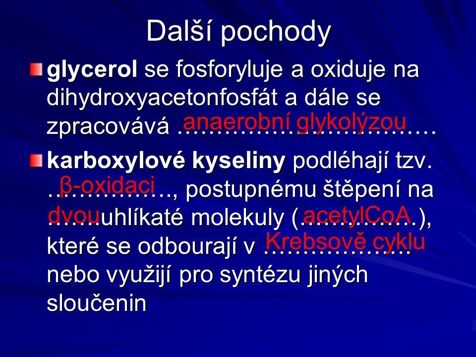 Další pochody glycerol se fosforyluje a oxiduje na dihydroxyacetonfosfát a dále se zpracovává ……………………………
