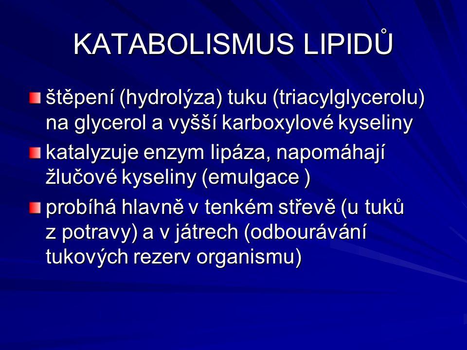 KATABOLISMUS LIPIDŮ štěpení (hydrolýza) tuku (triacylglycerolu) na glycerol a vyšší karboxylové kyseliny.