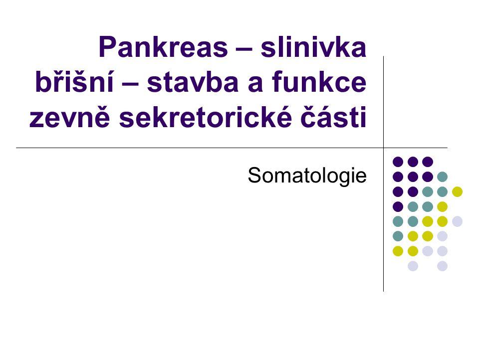 Pankreas – slinivka břišní – stavba a funkce zevně sekretorické části
