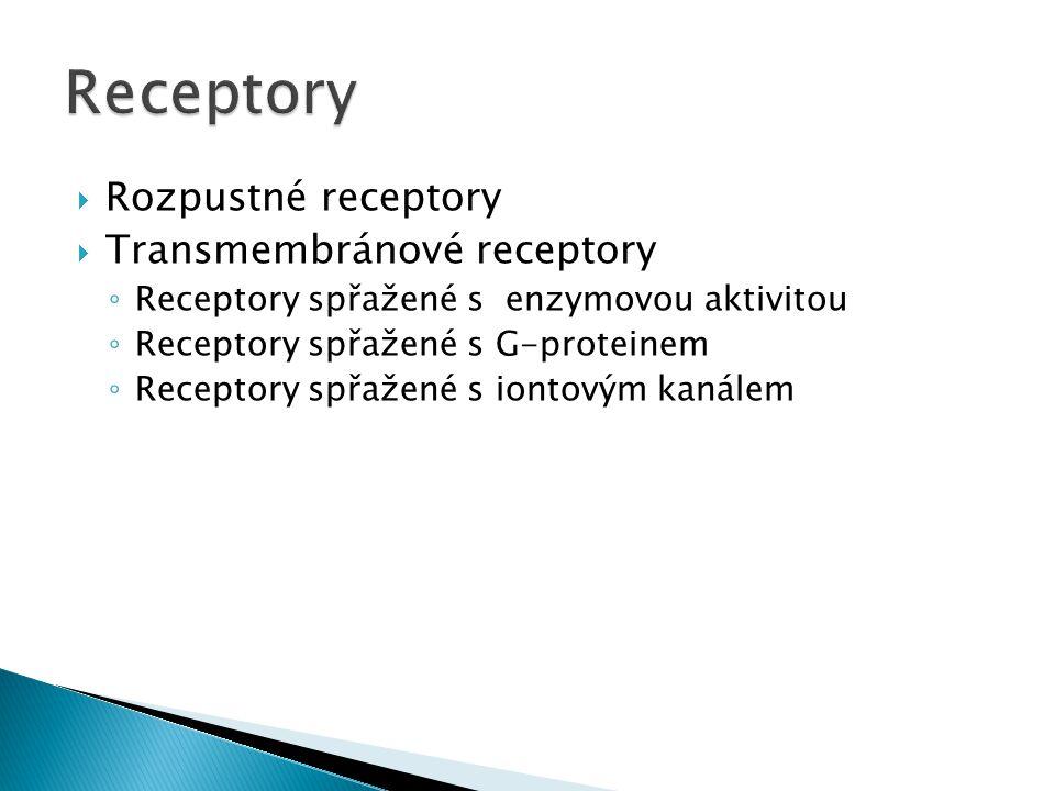 Receptory Rozpustné receptory Transmembránové receptory