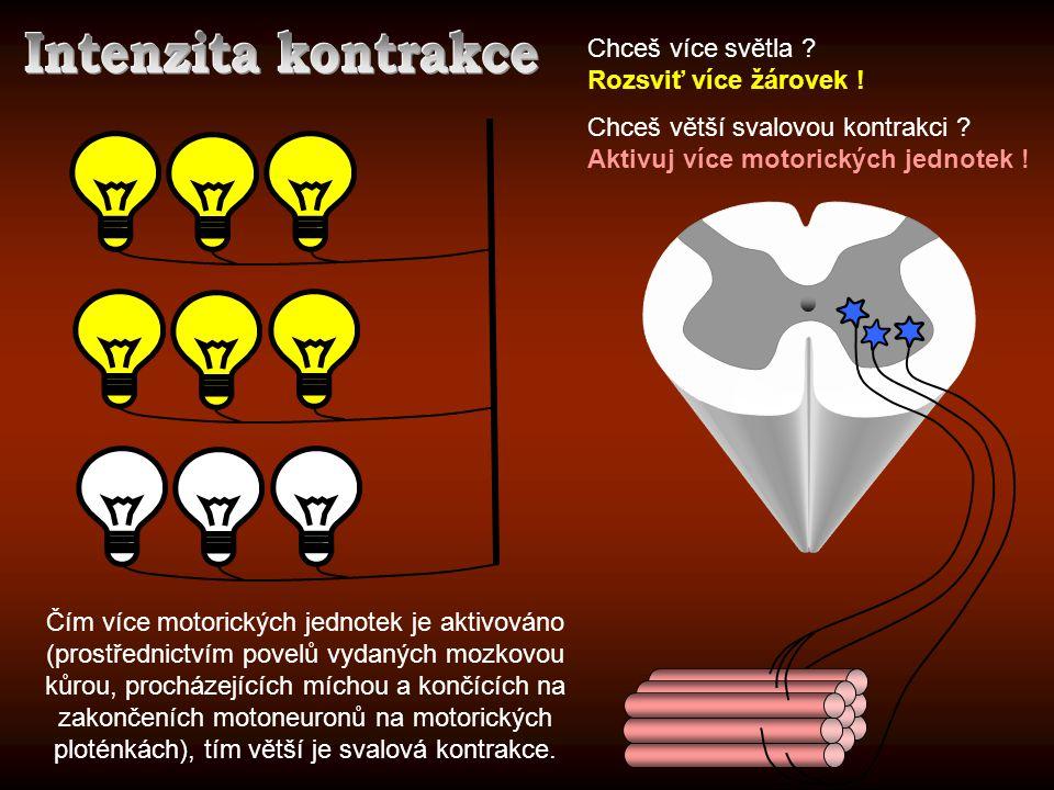 Intenzita kontrakce Chceš více světla Rozsviť více žárovek !