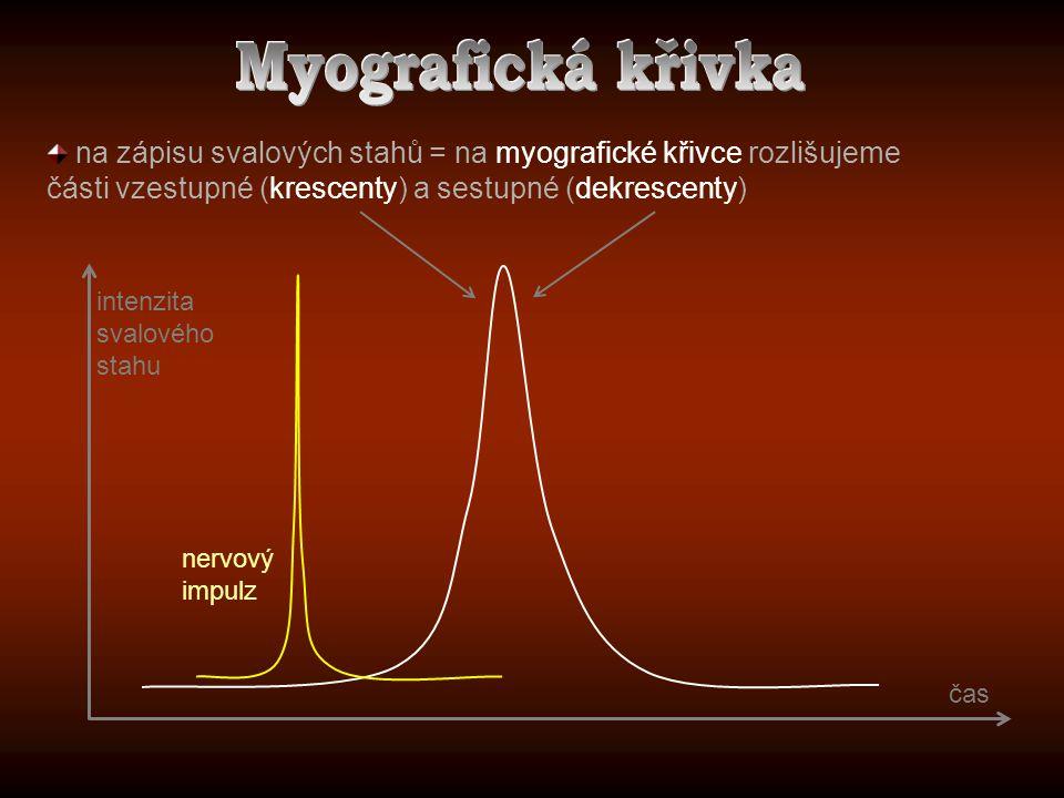 Myografická křivka na zápisu svalových stahů = na myografické křivce rozlišujeme části vzestupné (krescenty) a sestupné (dekrescenty)