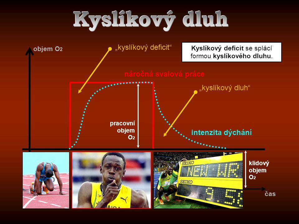 Kyslíkový deficit se splácí formou kyslíkového dluhu.