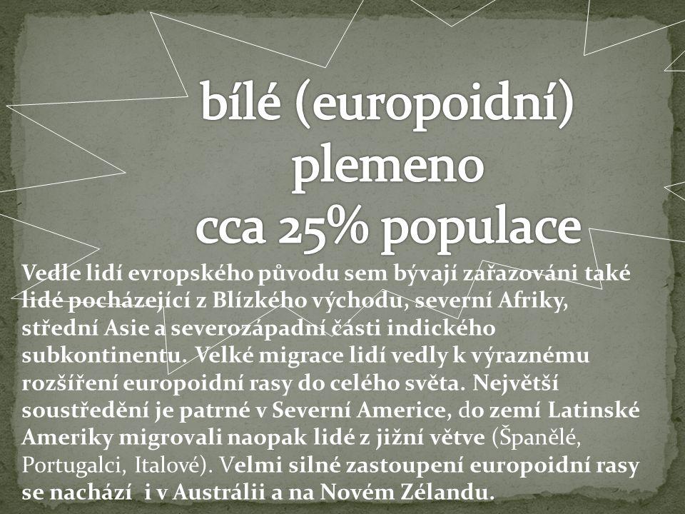 bílé (europoidní) plemeno cca 25% populace