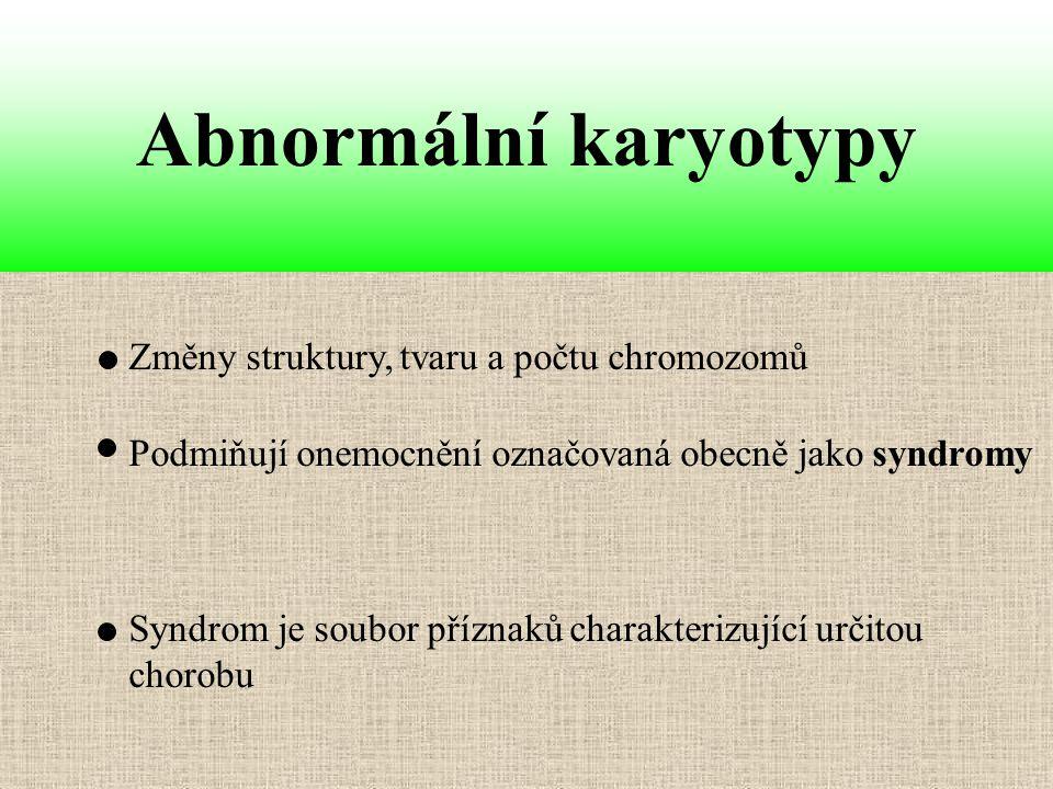 Abnormální karyotypy Změny struktury, tvaru a počtu chromozomů
