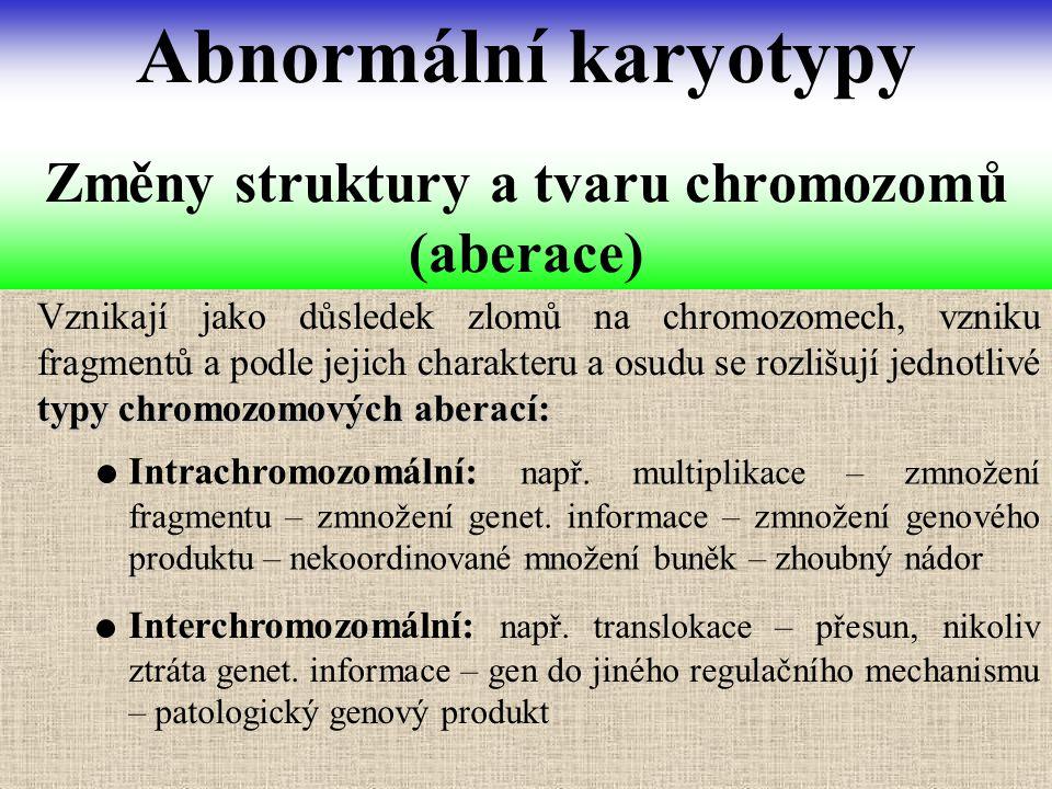 Změny struktury a tvaru chromozomů (aberace)