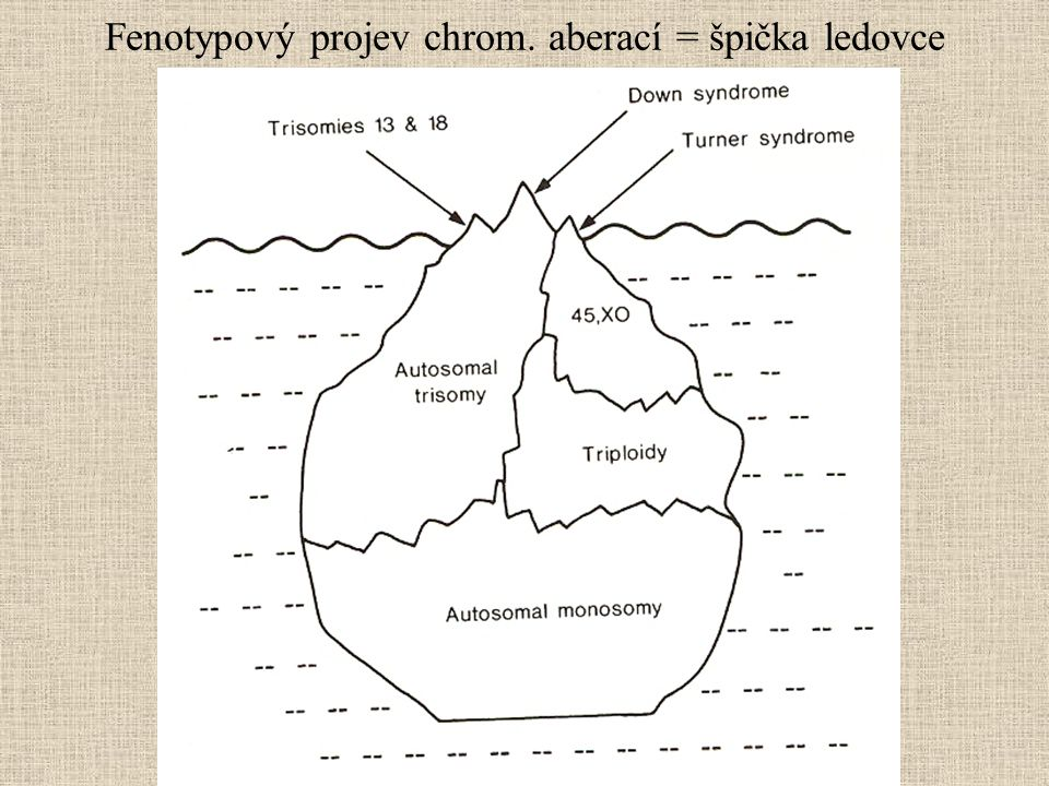 Fenotypový projev chrom. aberací = špička ledovce