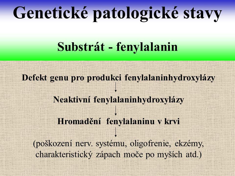 Substrát - fenylalanin
