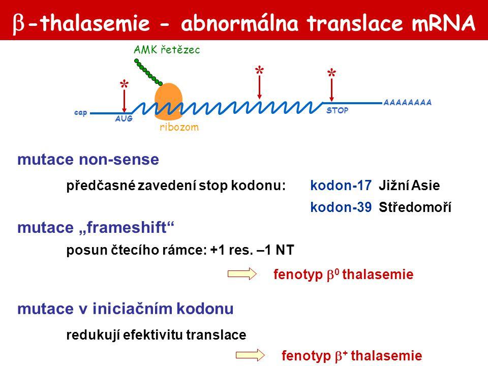 -thalasemie - abnormálna translace mRNA