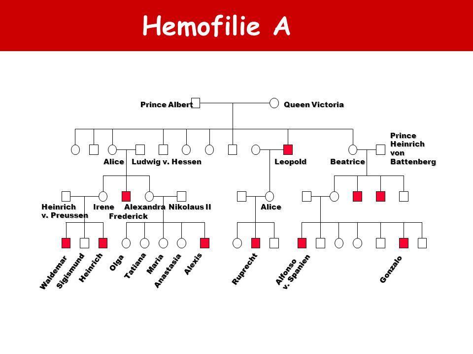 Hemofilie A Queen Victoria Prince Albert Prince Heinrich von