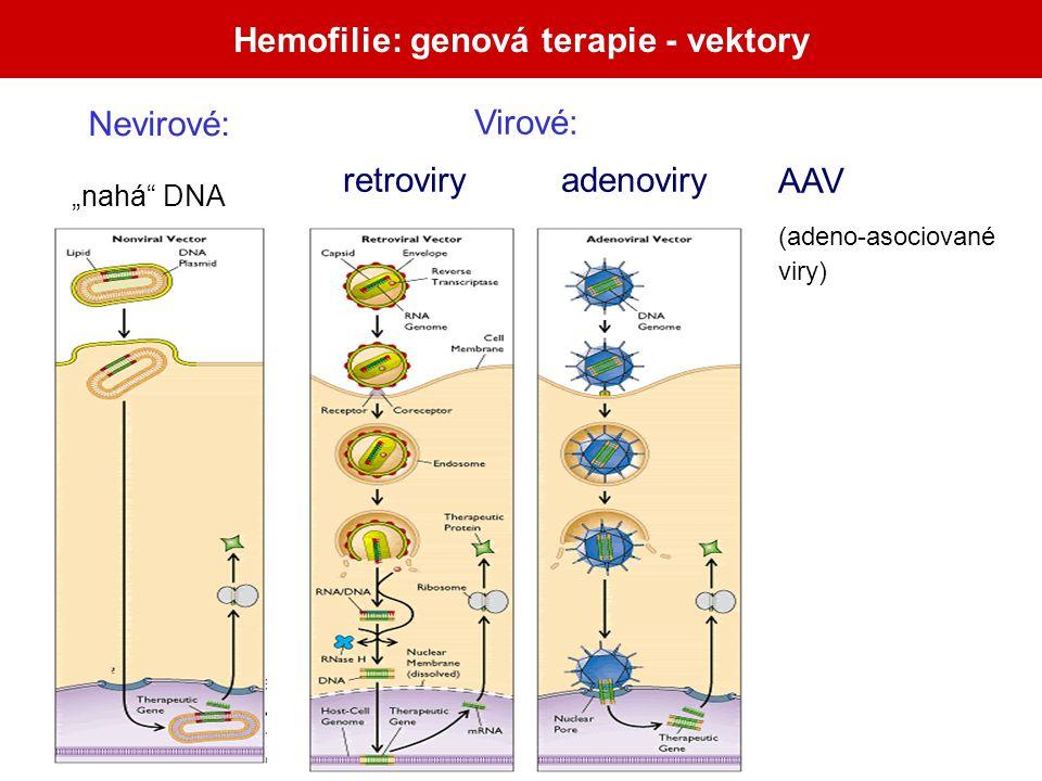 Hemofilie: genová terapie - vektory