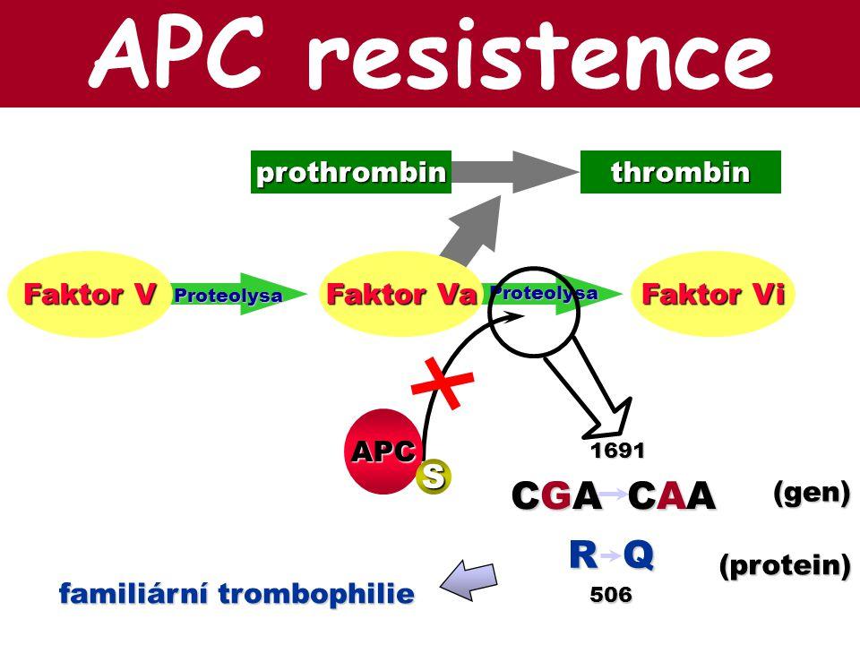 APC resistence CGA CAA R Q S prothrombin thrombin Faktor V Faktor Va