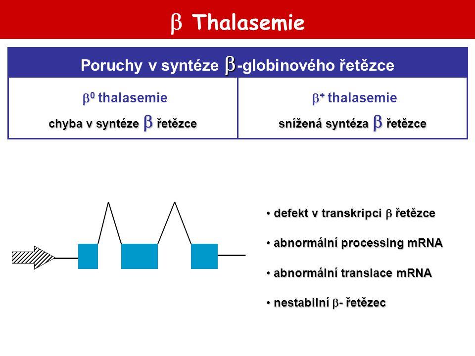  Thalasemie Poruchy v syntéze -globinového řetězce 0 thalasemie