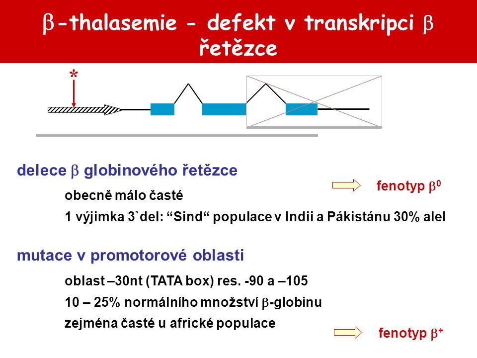 -thalasemie - defekt v transkripci  řetězce