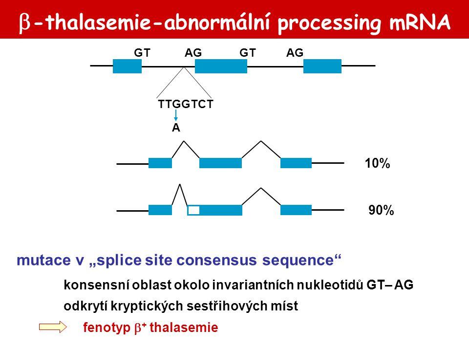-thalasemie-abnormální processing mRNA