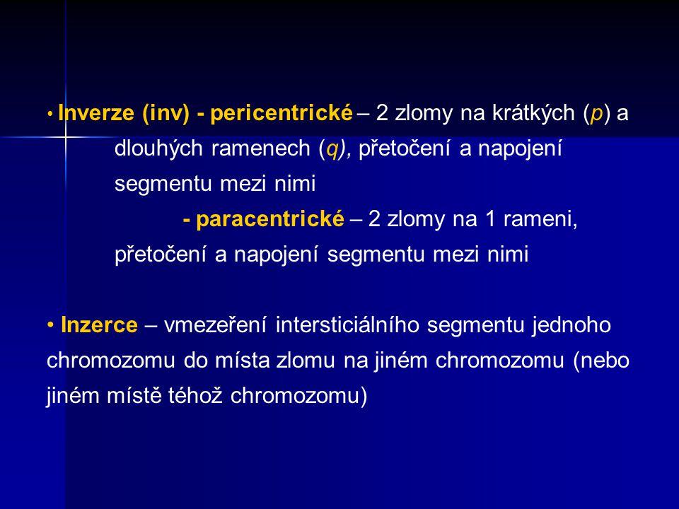 Inverze (inv) - pericentrické – 2 zlomy na krátkých (p) a
