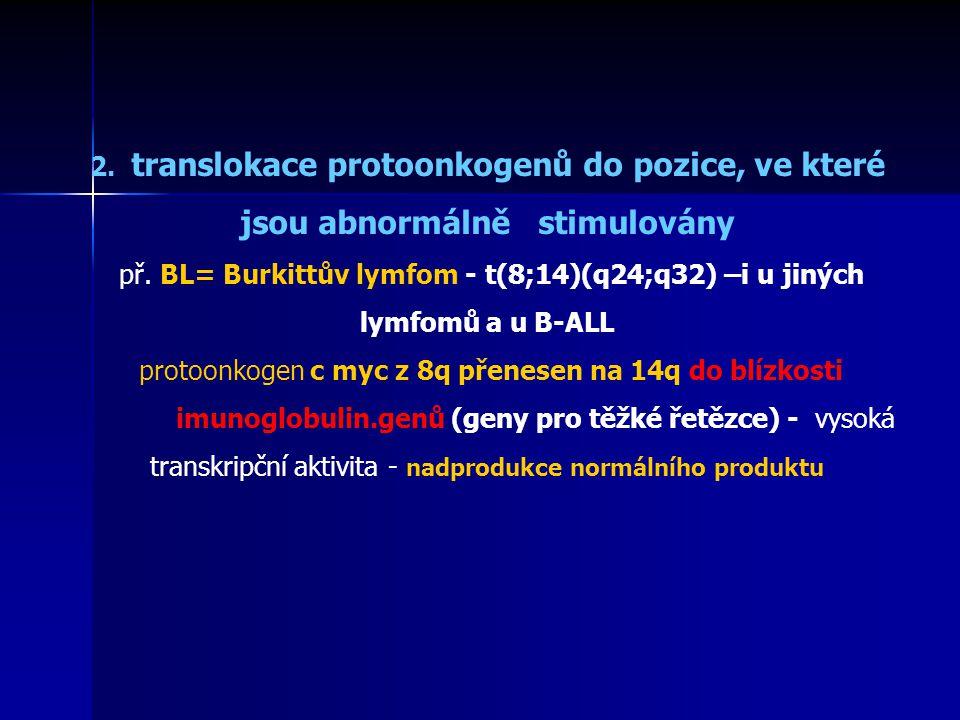 2. translokace protoonkogenů do pozice, ve které jsou abnormálně stimulovány