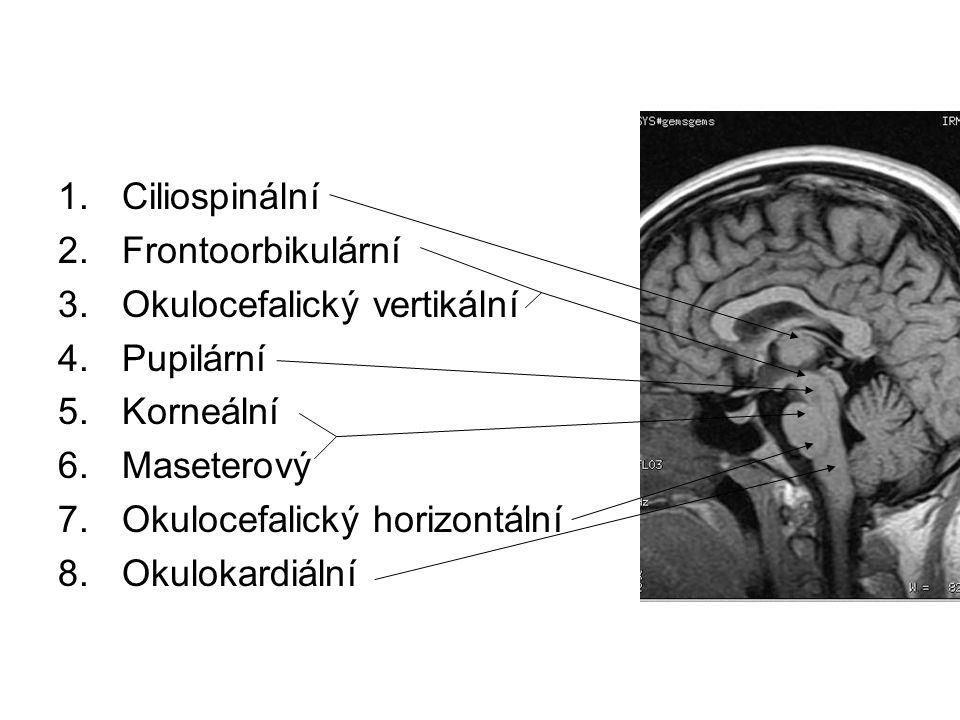 Ciliospinální Frontoorbikulární. Okulocefalický vertikální. Pupilární. Korneální. Maseterový. Okulocefalický horizontální.