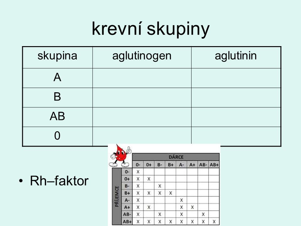 krevní skupiny skupina aglutinogen aglutinin A B AB Rh–faktor