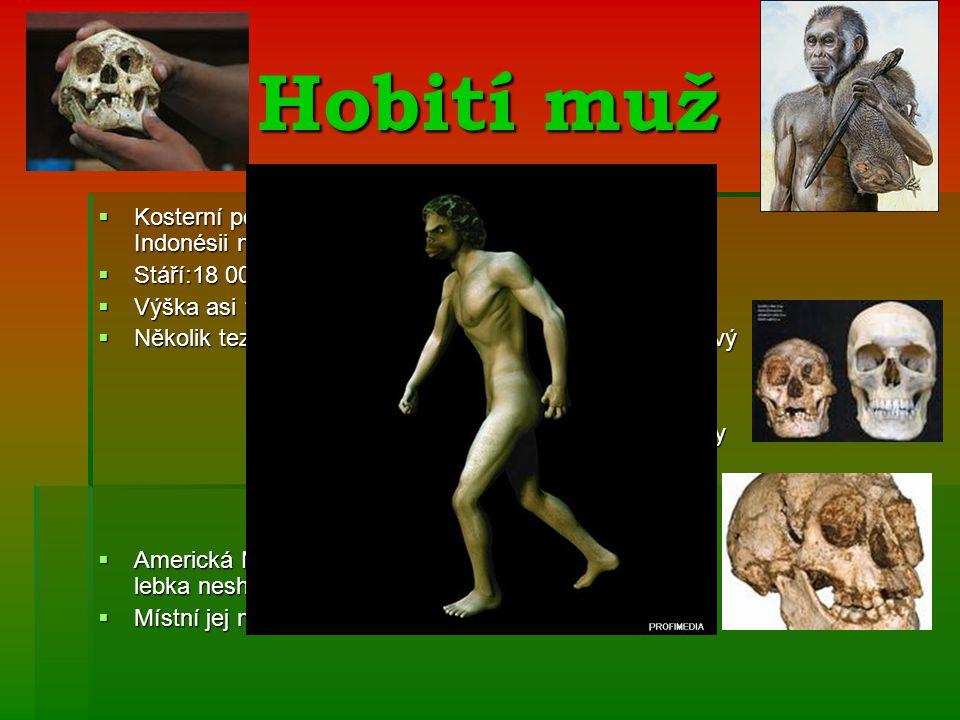 Hobití muž Kosterní pozůstatky (ženy) nalezené v roce 2003 v Indonésii na ostrově Flores. Stáří:18 000 let.