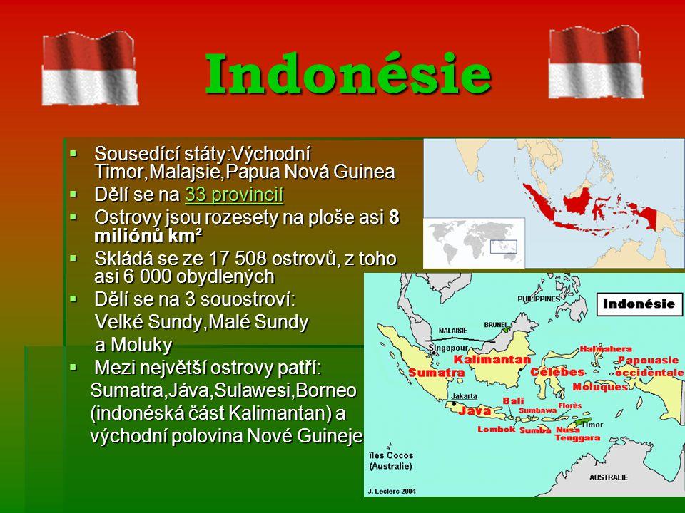 Indonésie Sousedící státy:Východní Timor,Malajsie,Papua Nová Guinea