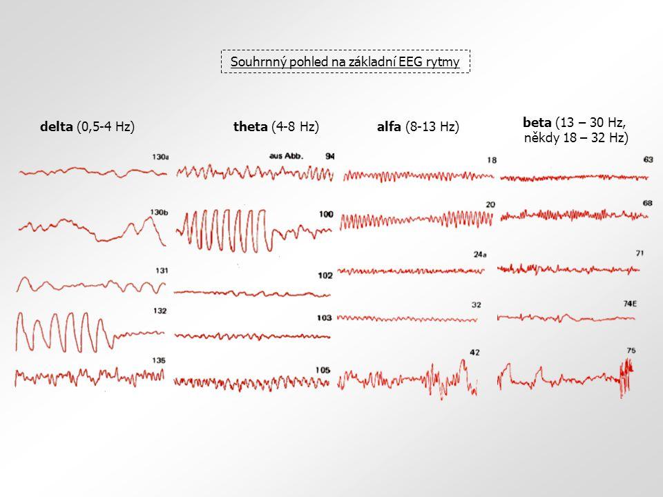 Souhrnný pohled na základní EEG rytmy