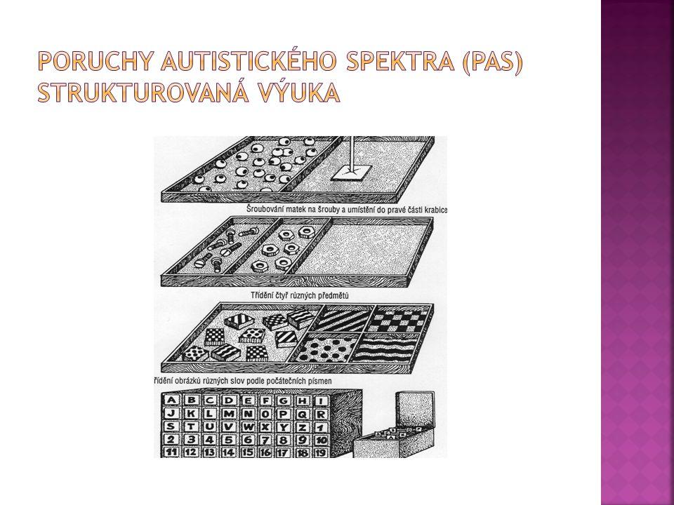 Poruchy autistického spektra (PAS) strukturovaná výuka