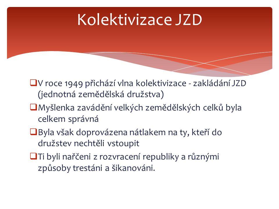 Kolektivizace JZD V roce 1949 přichází vlna kolektivizace - zakládání JZD (jednotná zemědělská družstva)