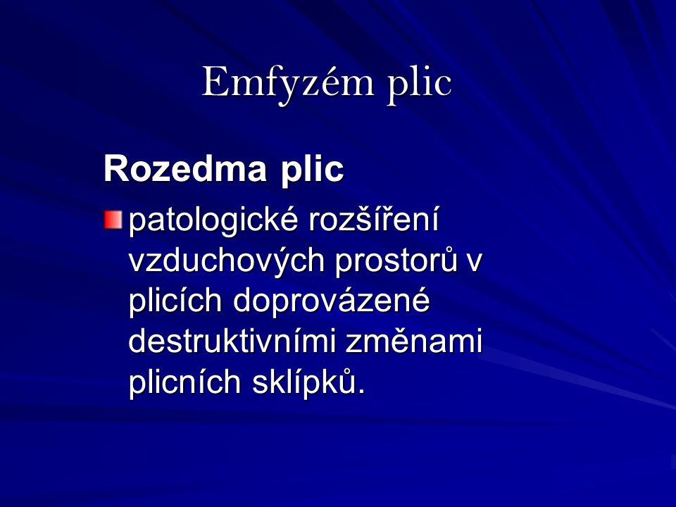 Emfyzém plic Rozedma plic