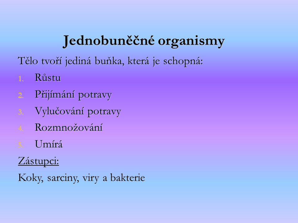 Jednobuněčné organismy