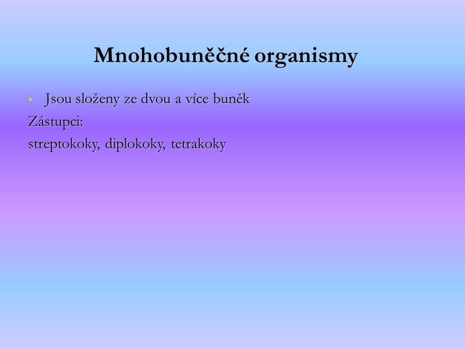 Mnohobuněčné organismy