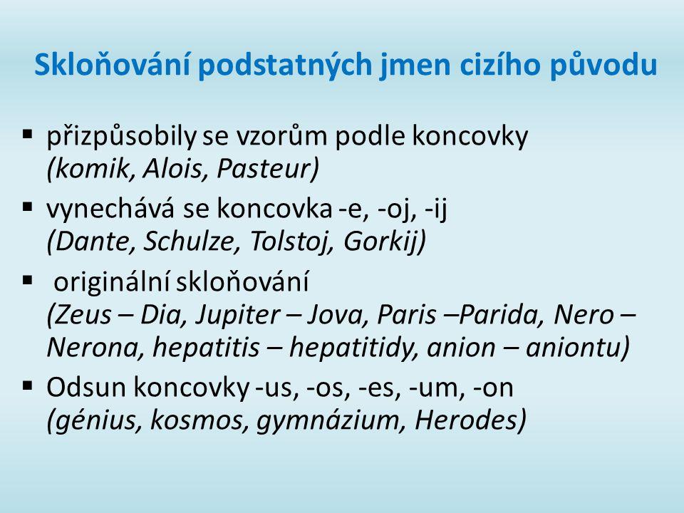 Skloňování podstatných jmen cizího původu