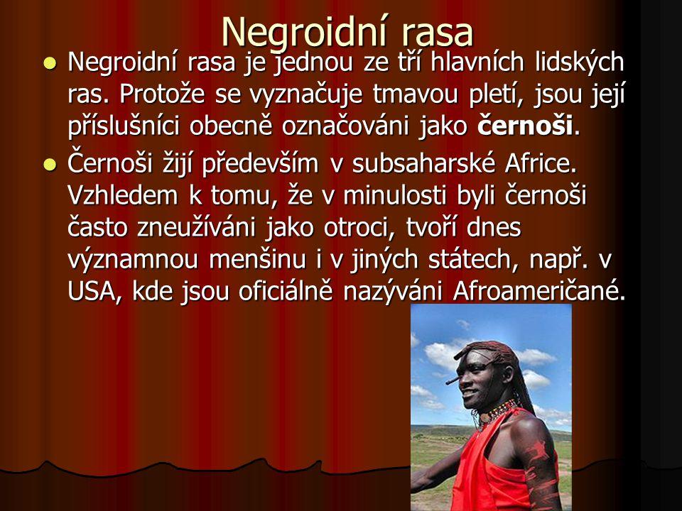 Negroidní rasa