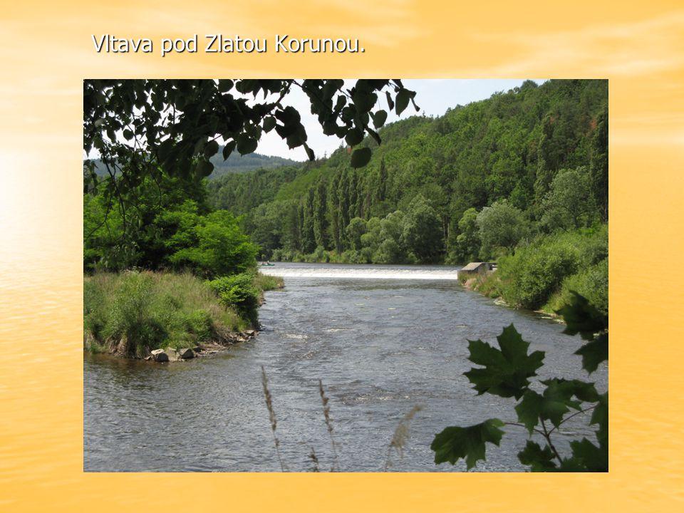 Vltava pod Zlatou Korunou.