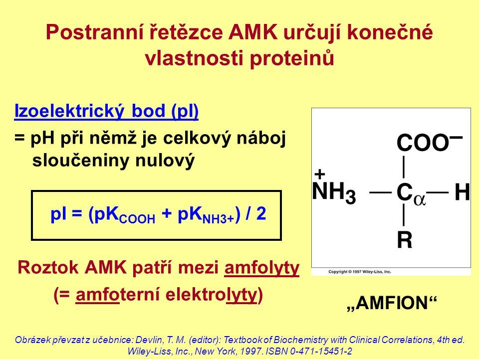 Postranní řetězce AMK určují konečné vlastnosti proteinů