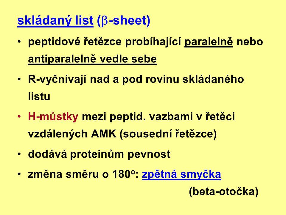 skládaný list (-sheet)