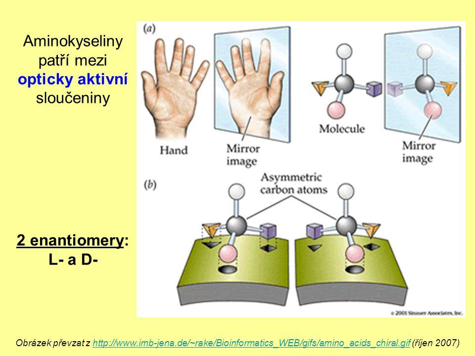 Aminokyseliny patří mezi opticky aktivní sloučeniny