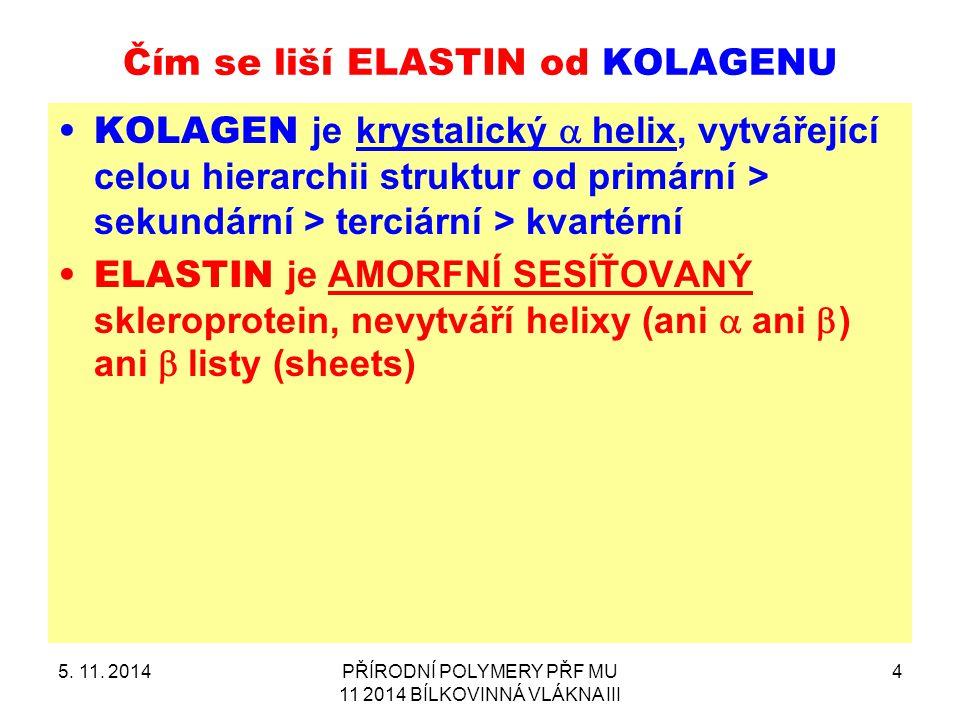 Čím se liší ELASTIN od KOLAGENU
