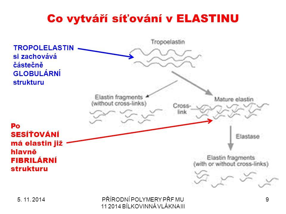 Co vytváří síťování v ELASTINU