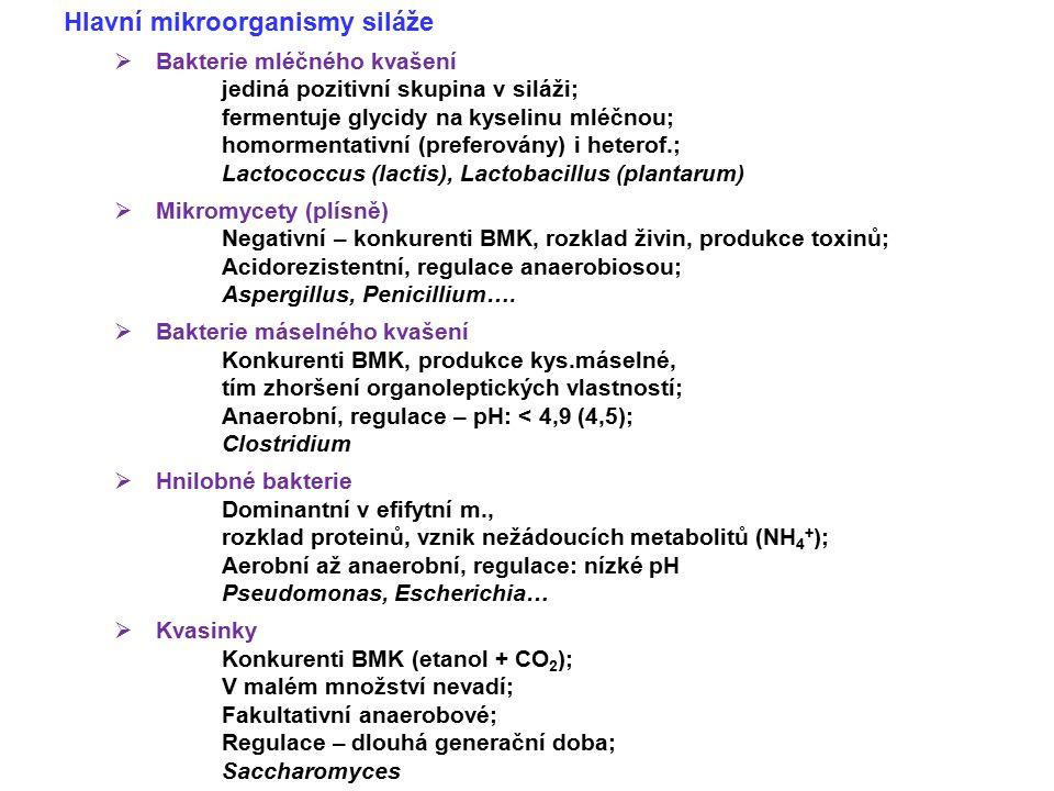 Hlavní mikroorganismy siláže