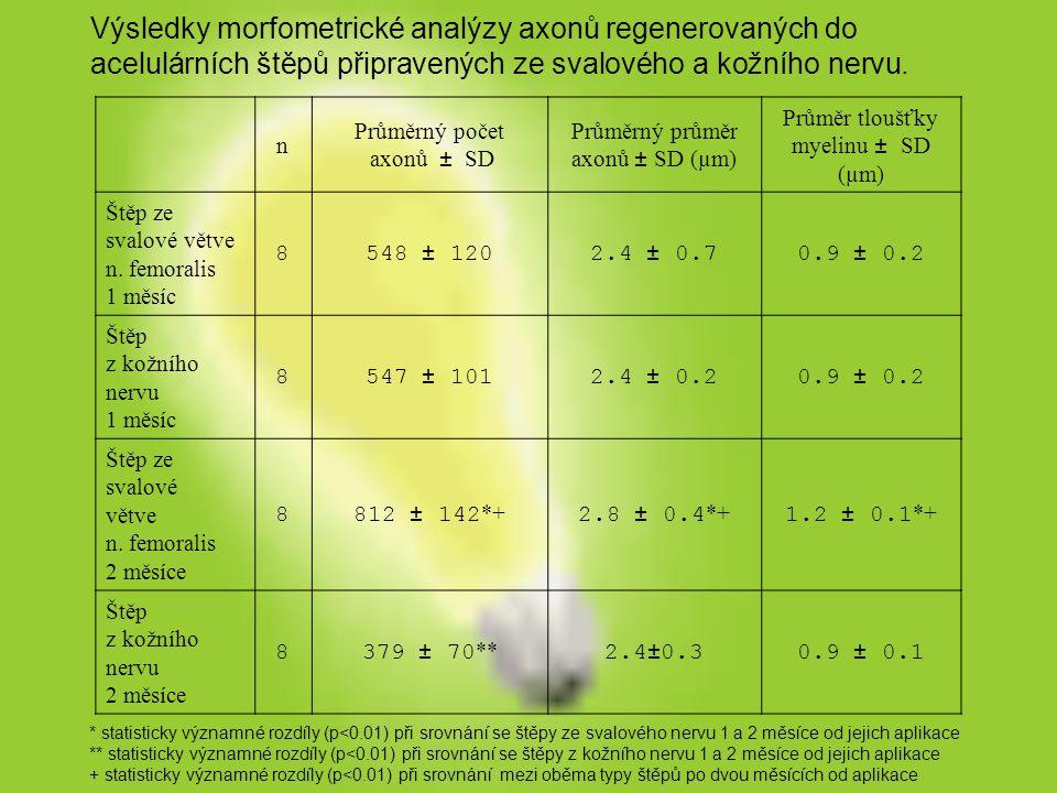 Výsledky morfometrické analýzy axonů regenerovaných do