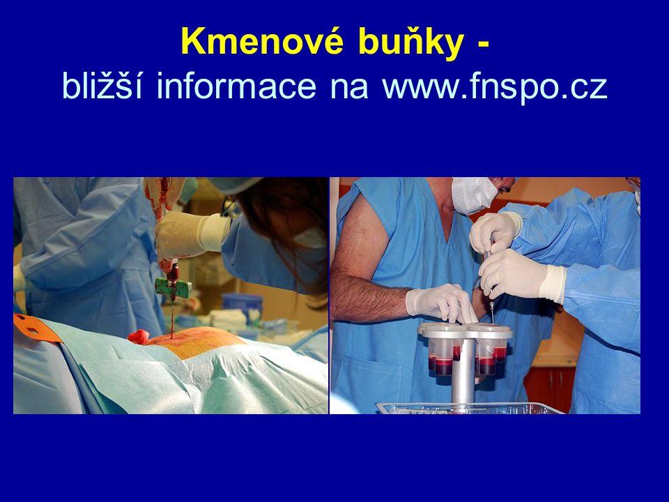 Kmenové buňky - bližší informace na www.fnspo.cz