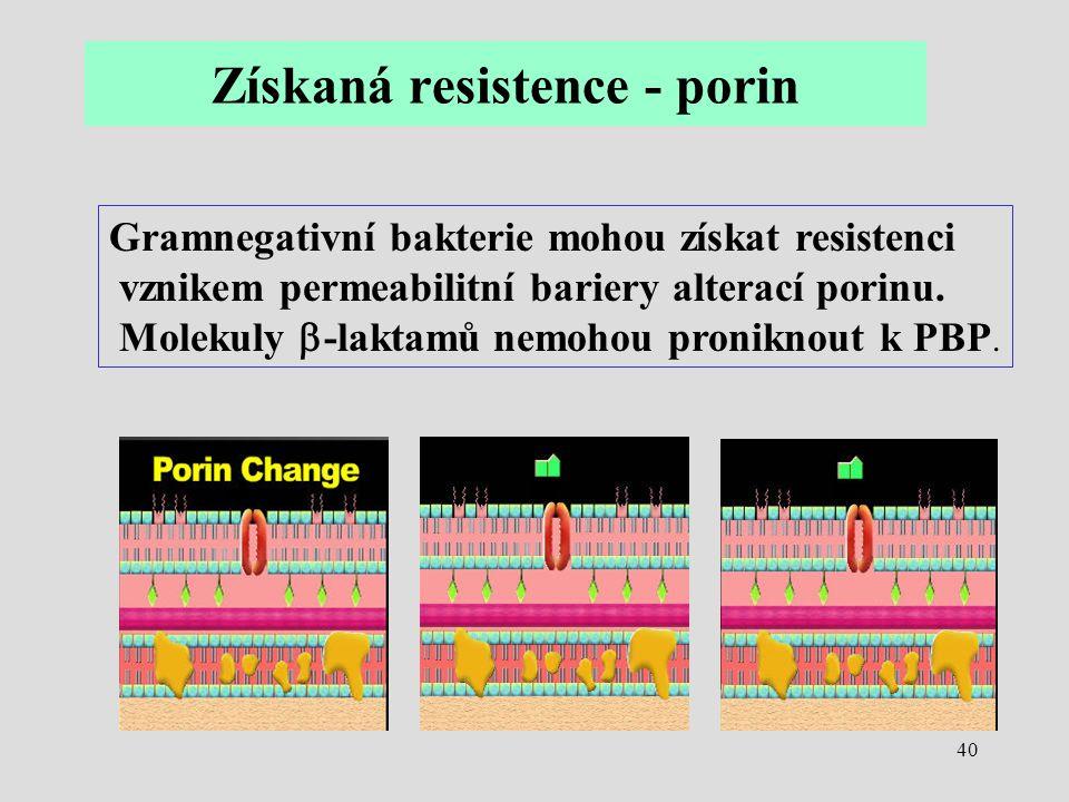 Získaná resistence - porin