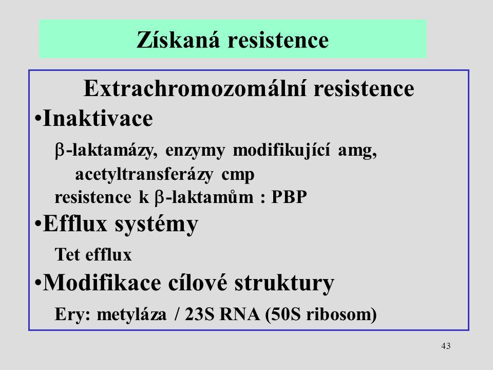 Extrachromozomální resistence